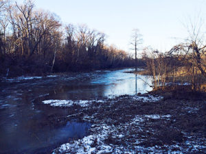 Tidal inlet in winter, Theodore Roosevelt Island