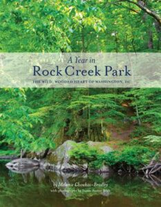 A Year in Rock Creek Park: The Wild, Wooded Heart of Washington, DC