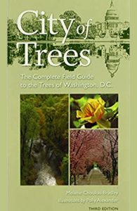 Book cover for City of Trees by Melanie Choukas-Bradley